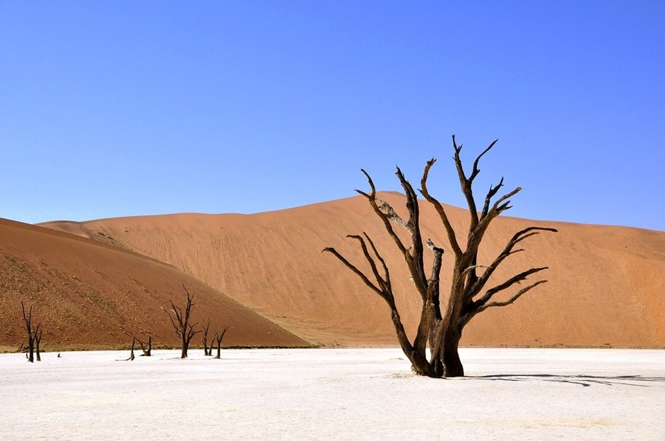 Drought in Namibia