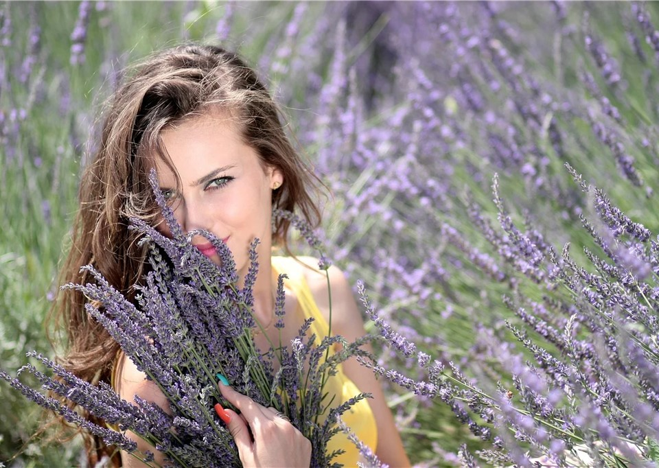 English lavender with lady