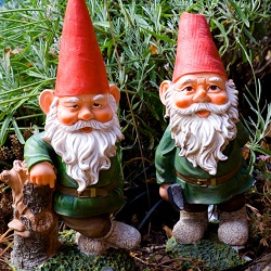 Gnomes, Elves, Gargoyles & Dragons