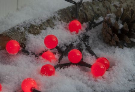 100 RED Berry LED Multi Function Coloured Lights For Outdoor or in Battery Operated & timer