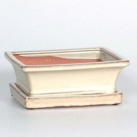 Ceramic Bonsai Dish with Saucer in Antique Cream. Rectangular 15cm