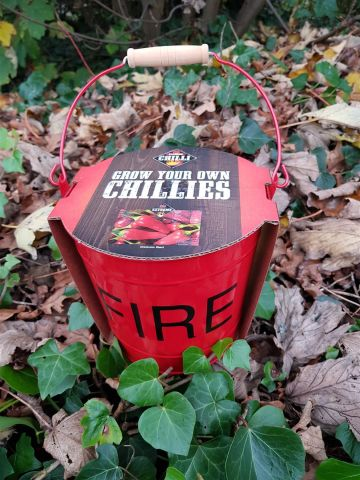Chilli growing kit for a fiery gift