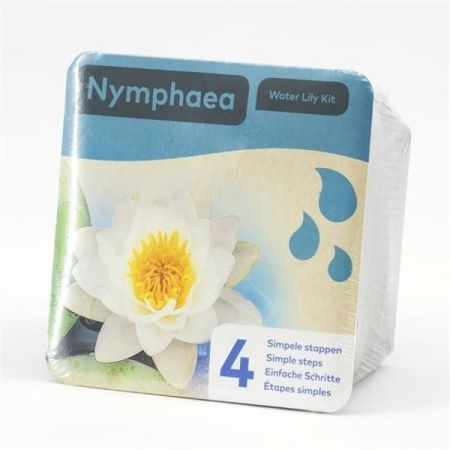 WHITE Water Lily Growing Kit.  Nymphaea pond plant