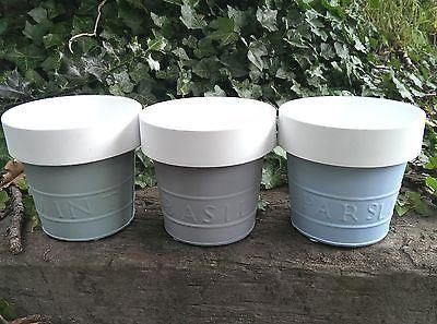 Gisela Graham Painted Metal Pots for Parley  Sage or Mint.[Parsley]