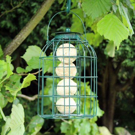 Fat Ball Feeder with Squirrel / Jackdaw Guard