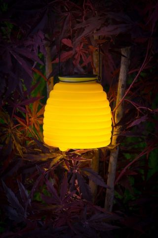 Wasp Catcher with LED Lighting. Solar Powered YELLOW