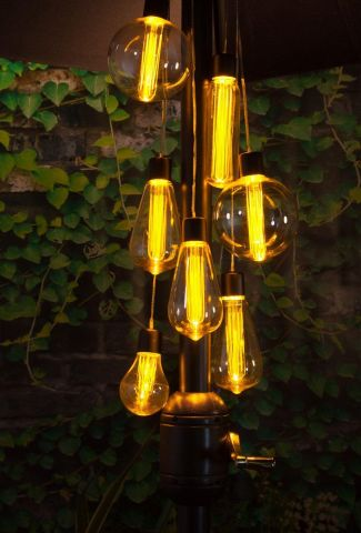 Outdoor Vintage Bulb Parasol Cluster Lights  Battery Operated  Eddison Lightbulb