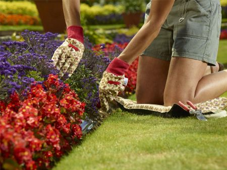Twin pack of Cotton Gardening Gloves ROYAL CROWN