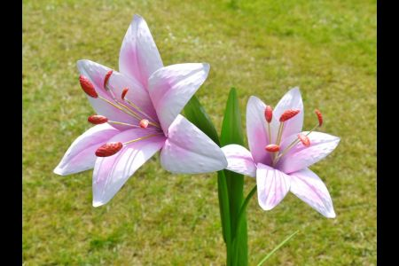 Pink Lily Metal Flower Stake for the Garden