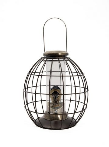 Heritage Gold Squirrel and Jackdaw Proof Wild Bird Seed Feeder