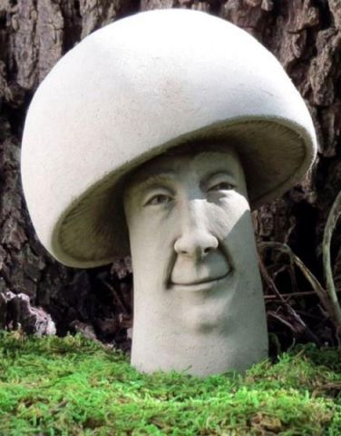 Fun Gi Home & Garden Ornament Made from Reconstituted Stone