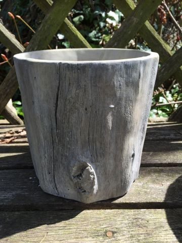 Tree Trunk Planter Pot for the Garden or Indoors. 17cm Dia
