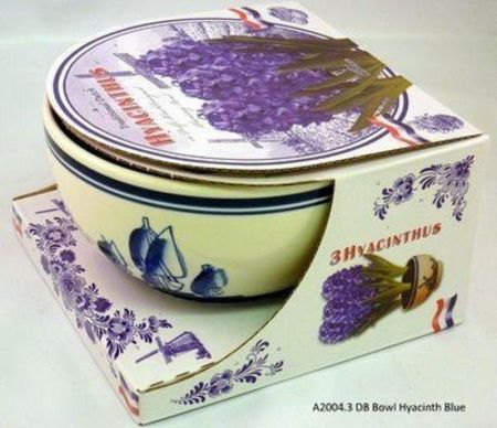 Ceramic Delft Bowl & Blue Hyacinth bulb gift pack.  Includes bowl bulbs & compost DP12