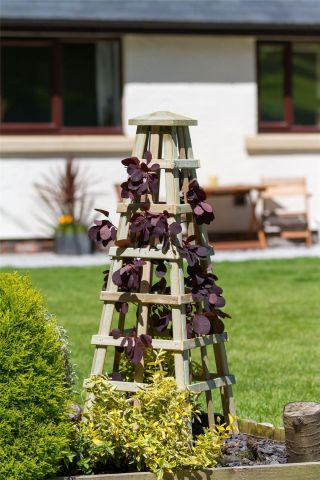 Wooden Garden Scafell Obelisks for climbing plants (Pack of 2)