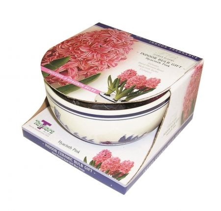 Ceramic Delft Bowl & Pink Hyacinth gift pack.  Includes bowl bulbs and compost DP11