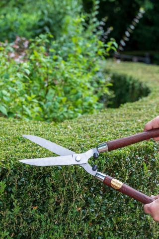 National Trust Hedge Shear Made by Burgon & Ball