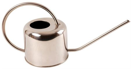 Stainless Steel Watering Can. Holds 1 litre
