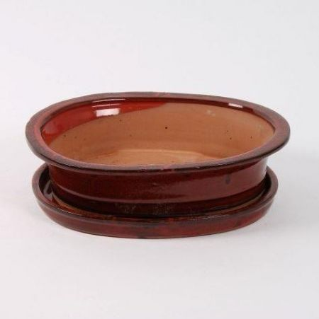 Oval Bonsai Dish and Saucer 30cm wide.   Deep Red