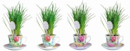 Ceramic Blue Tea Cup Herb Grow Kit Gift Pack with Spoon Marker. Chives