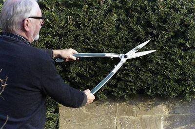 Burgon & Ball Razor sharp RHS Endorsed Precision Hedge Shears
