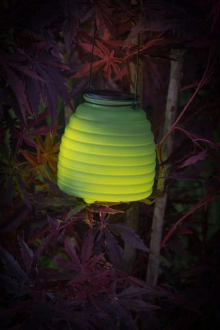 Wasp Catcher with LED Lighting. Solar Powered GREEN