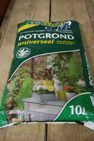 10 Litre Bag of Potting Compost.