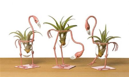 Novelty Air Plants in Flamingo Figures x 3