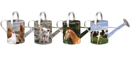 Farm Animal Watering Can. Piglet, Chicken, Horse or Cow