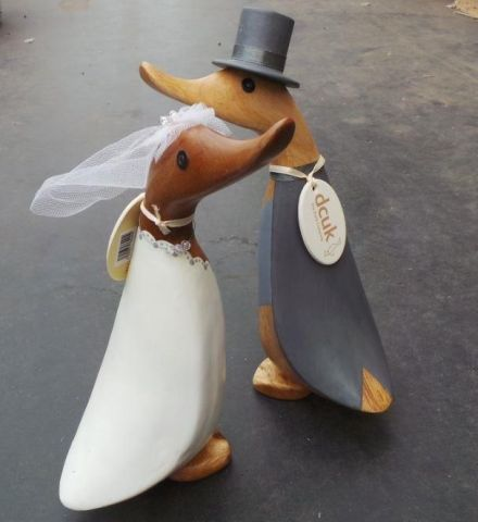 bride and groom ducks from dcuk
