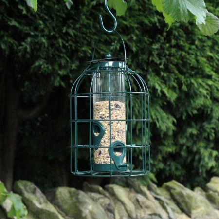 Seed Feeder with Squirrel & Jackdaw Guard for Wild Birds