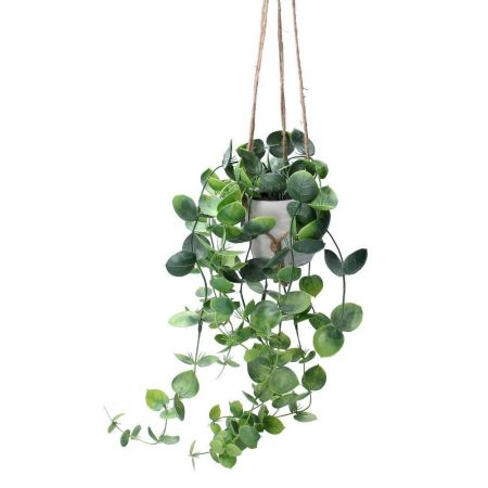 Trailing Hoya Plant Artificial Plant in a Pot with Twine Macrame Hanger