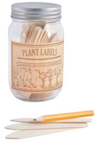 Wooden Plant Labels in a Glass Jar