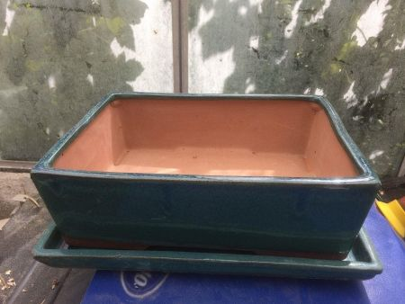 Large Ceramic Bonsai Dish with Saucer in Teal. Straight Sides 30cm