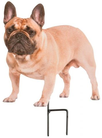 French Bull Dog on a stick Garden Ornament