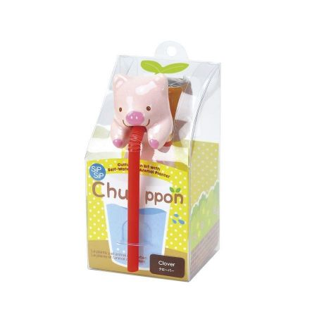 Novelty Animal Seed Kit. Chuppon Drinking Animal Planter. Pig/Clover