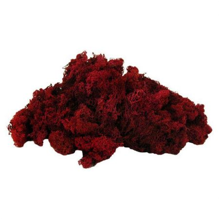 Finland Moss Deep Red 500g. For Hanging Baskets & Wreath Making
