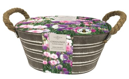 Outdoor Cornflower oval metal planter kit.  Includes seeds, compost and growing culturals.