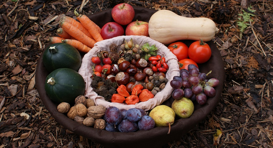 Harvest happiness! How to manage your vegetable and fruit glut