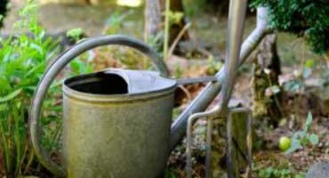3 easy steps to the 'no dig method' of gardening and why it can work for you