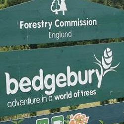 Bedgebury Pinetum in Kent is a Forestry Commission site open to the public
