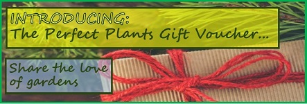 Perfect Plants Gift Voucher