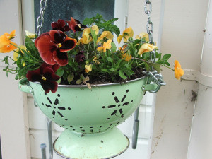 Colander-planter for a hanging basket