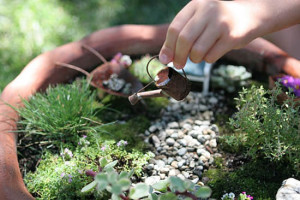 Miniature garden with planting, watering can, gravel