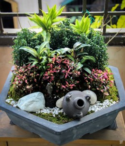 Miniature garden with planting in a pot