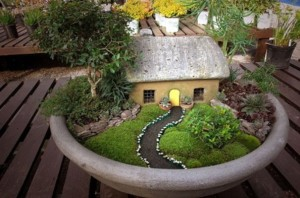 Plants suitable for miniature garden with house and paths