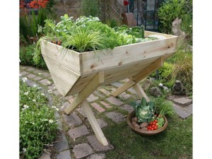 vegetable bed 1