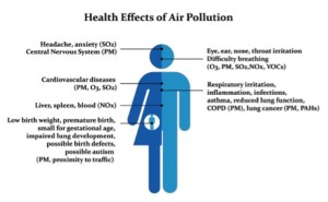 Air pollution, gases, toxins, plants, health