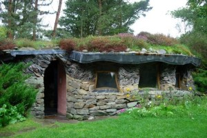 Green roof on house or shed