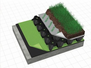 Root barrier and drainage for green roof