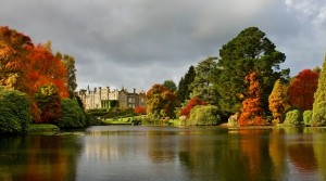Sheffield Park autumn colour trees landscape garden